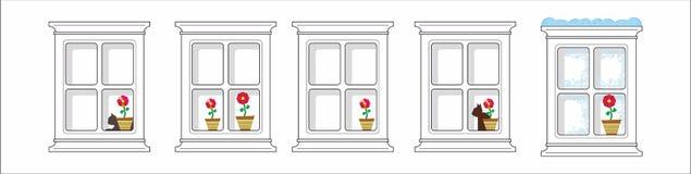 Fönster, katt och blomma Arkivbilder