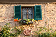 Fönster med blommor i landet Bolgheri, Tuscany royaltyfria foton