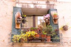 Fönster med blommor på det Fotografering för Bildbyråer