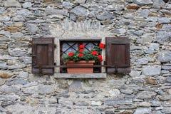 fönster med den röda pelargon Royaltyfri Bild