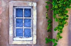 Fönster med frostmodeller Royaltyfri Bild