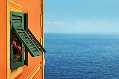 Fönster med gräsplanslutare vid havet Arkivbild