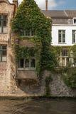Fönster med murgrönan på den över en kanal Royaltyfri Bild