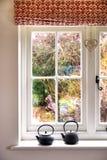 Fönster med sikt av buskar Arkivfoton