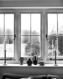 Fönster med sikt av buskar Fotografering för Bildbyråer