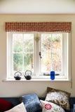 Fönster med sikt av buskar Royaltyfri Foto