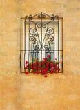 Fönster med slingrigt raster för metall Arkivbilder