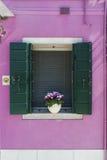 Fönster med slutare i en rosa vägg Arkivbild