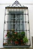 Fönster med växter och medelhavs- stänger Arkivbilder