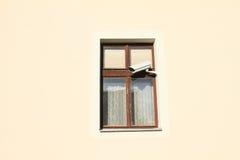 Fönster med videokameran Arkivbild