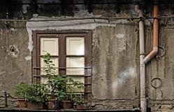 Fönster och Drainrør arkivfoton
