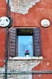 Fönster på den orange väggen med blommakruset Royaltyfri Foto