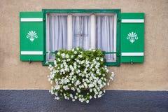 Fönster som dekoreras med vita sommarblommor royaltyfri fotografi