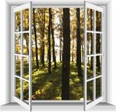 Fönster som förbiser skogen Arkivbilder