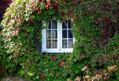 Fönster som inramas Royaltyfria Bilder