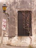 Fönster, tecken, lampa och träd Royaltyfri Foto