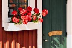 Fönsterask med röda blommor Royaltyfri Bild