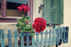 Fönsterbräda med röda blommor och gamla träslutare Arkivfoton