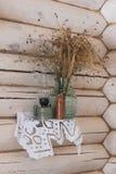 Fönsterbrädaliv med den ryska lerajagen Royaltyfria Foton
