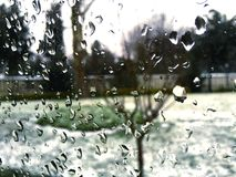 Fönsterdroppar royaltyfria bilder
