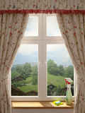 Fönsterlokalvård Royaltyfria Foton