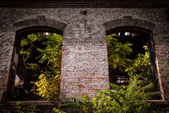 Fönsterramar på en gammal industribyggnad Arkivfoton