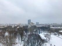 Fönstersikten på parkerar i vinter royaltyfri bild