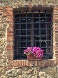 Fönsterspisgaller på lantlig fasad med blommor Royaltyfria Bilder
