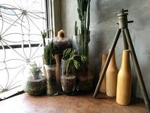 Fönsterstilleben, kakturs, flaskor arkivbild