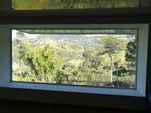 Fönstret av lugn arkivbild