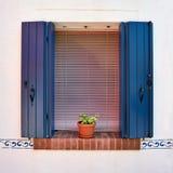 Fönstret med öppnade blått stänger med fönsterluckor och blommar i krukan burano italy venice Arkivfoton