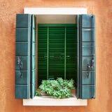 Fönstret med gräsplan stänger med fönsterluckor och blommar i krukan burano italy venice Arkivbilder