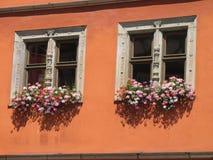 Fönstret två med blommor Arkivbilder