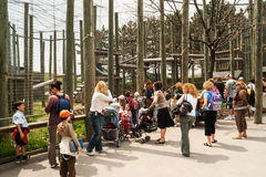 Föräldrar med barn som besöker den Toronto zoo Royaltyfri Foto