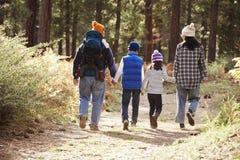 Föräldrar och tre barn som går i en skog, baksidasikt royaltyfri fotografi