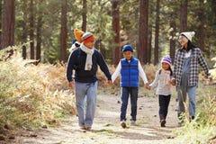 Föräldrar och tre barn som går i en skog, främre sikt royaltyfria bilder