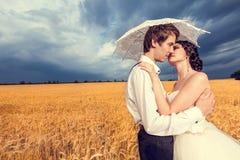 Förälskad brud och brudgum i vetefält med blå himmel i baksidan royaltyfri bild