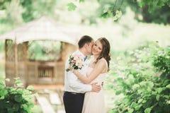 Förälskade älskvärda par kyssa sig på dagbröllopet som utomhus står i parkera nära sjön Royaltyfri Foto