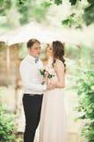 Förälskade älskvärda par kyssa sig på dagbröllopet som utomhus står i parkera nära sjön Royaltyfria Bilder