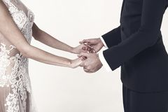 Förälskade Ballrom danspar, innehavhänder som isoleras på vit bachground royaltyfri fotografi