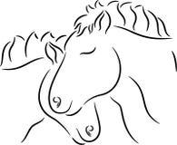 Förälskade hästar royaltyfri bild