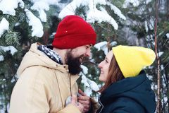 Förälskade lyckliga par ha gyckel i snön arkivfoto