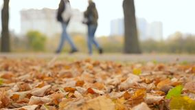 Förälskade par går på vägen långsam rörelse den höstliga dagen låter vara melankolisk yellow stock video