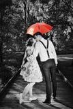 Förälskat flörta för unga romantiska par i regn rött paraply royaltyfria bilder