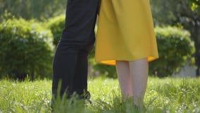 Förälskat parkerar krama för lyckliga caucasian par och ömt att le på bakgrunden av den gröna våren Romantisk utgifter stock video