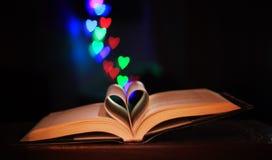 Förälskelse av läsning Royaltyfri Bild