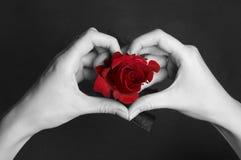 förälskelse betyder Fotografering för Bildbyråer