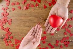 Förälskelse för valentindaghälsovård som rymmer röd hjärta- och världshälsodag royaltyfria foton