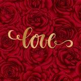 Förälskelse Hand dragen borstepennbokstäver på röd ros för bakgrundsblomma planlägg feriehälsningkortet och inbjudan av bröllop s Royaltyfria Bilder