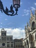 Förälskelse i den San Marco fyrkanten, Venedig arkivbilder